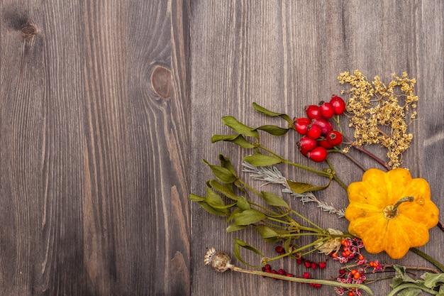 ハロウィーン秋のコンセプト。カボチャ、ヤドリギ、エルダーベリー、ポピー、ホップ、ドッグローズ、シサンドラ