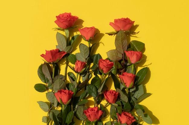 黄色の背景にサンゴのバラの束