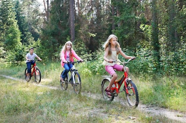 Дети катаются на велосипедах в лесу