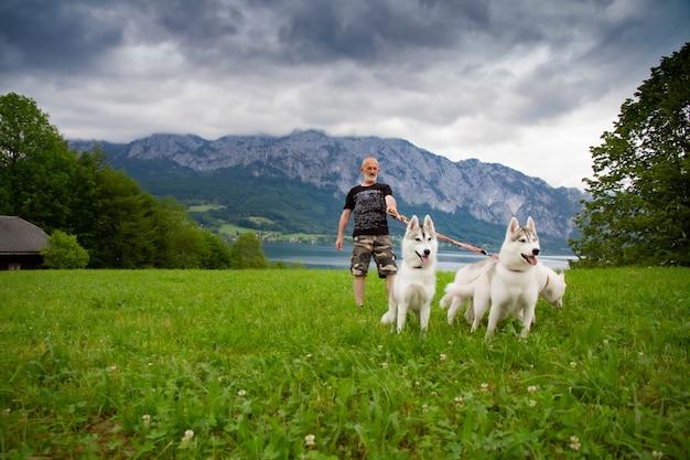У озера гуляют старик и ездовые собаки. альпийский пейзаж. активный отдых пенсионера. пожилой мужчина улыбается. прогулка с сибирской лайкой.
