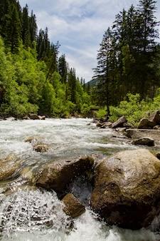 Пейзаж гор и леса и речка