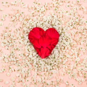 白いカスミソウの花、柔らかいピンクの背景に赤い花びらの心