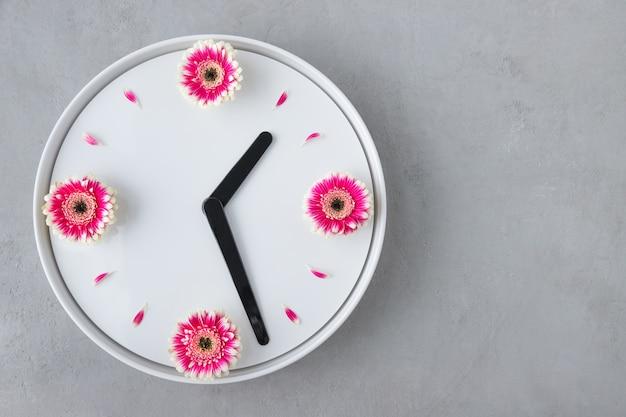 新鮮なピンクのガーベラの花から作成された白い時計の創造的な配置
