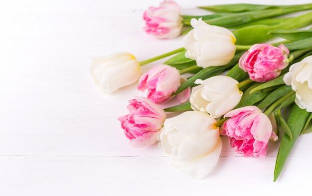 Красивые тюльпаны на белом фоне деревянные
