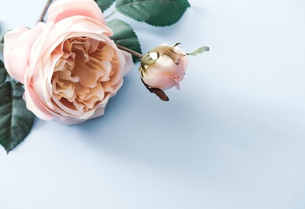 人工のピンクのバラの花とパステルブルーの背景の葉。テキストのための場所、フラットレイアウトコンセプト。