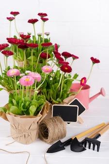 Весенний сад работает концепция. садовые инструменты, цветы в горшках и лейки на белом столе.