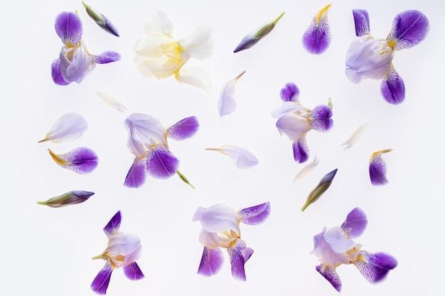Композиция цветов. фиолетовые цветы ириса на белом мраморе.