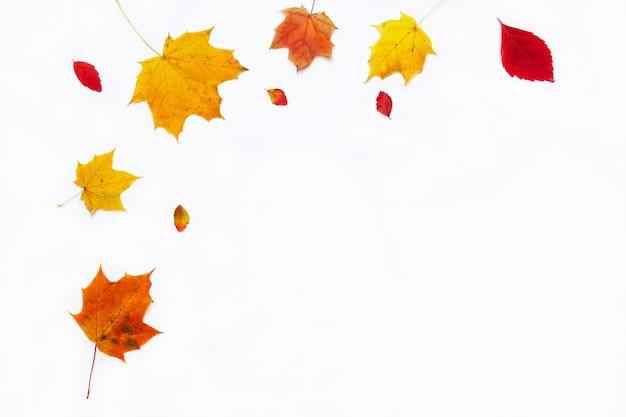 Граница осени сделанная из листьев падения на белой предпосылке. плоская планировка, вид сверху. скопируйте место для сезонных акций и скидок.