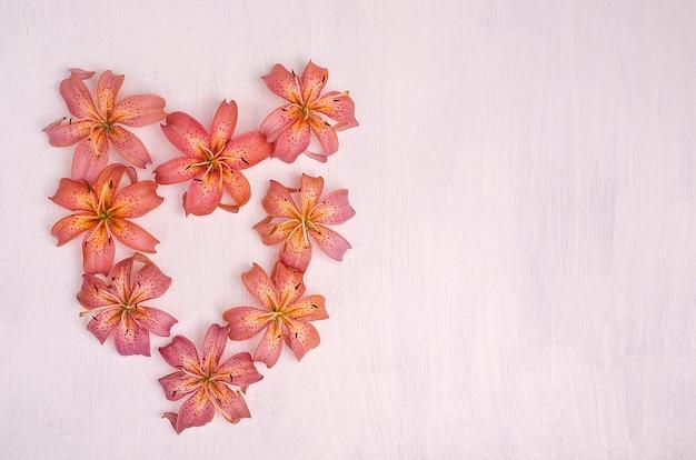 白い木製の背景にハートの形のピンクのユリの花。バレンタインデーのコンセプト