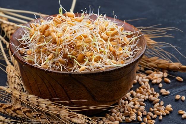 Целые ростки пшеницы. сырая, веганская, вегетарианская здоровая пища. крупный план.