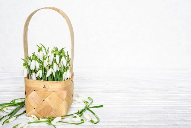 コピースペースを持つ白い木製テーブルの枝編み細工品バスケットに春スノードロップの花