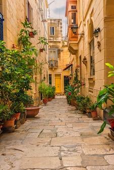Валлетта, мальта. старая средневековая пустая улица с желтыми зданиями и цветочными горшками. вертикальная ориентация