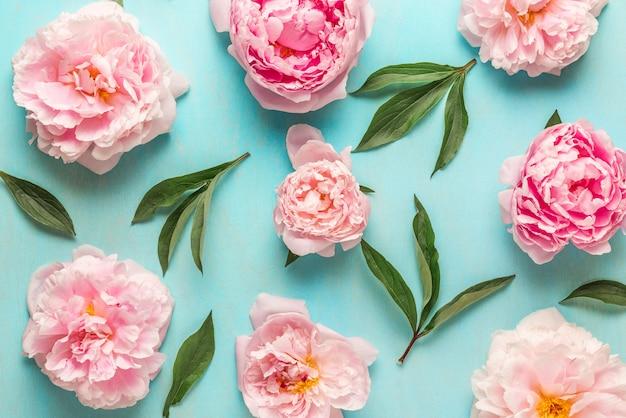 花の組成物。青い木製の背景に緑の葉とピンクの牡丹の花で作られたパターン。フラットレイ