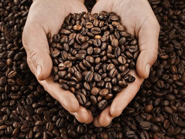 Жареные кофейные зерна в женских руках. свежий ароматный темный кофе. крупный план.