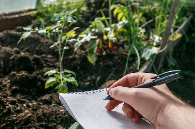 ノートブックの苗でメモを取る温室労働者の手をクローズアップ。トマト苗