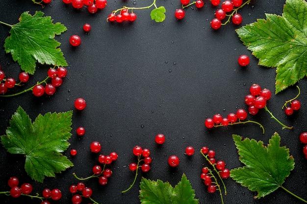 水滴と黒の背景に葉と赤と黒スグリ。テキスト用の空き領域。上面図。