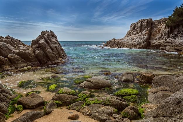 夏のスペイン海岸の詳細(カタロニア、コスタブラバ)