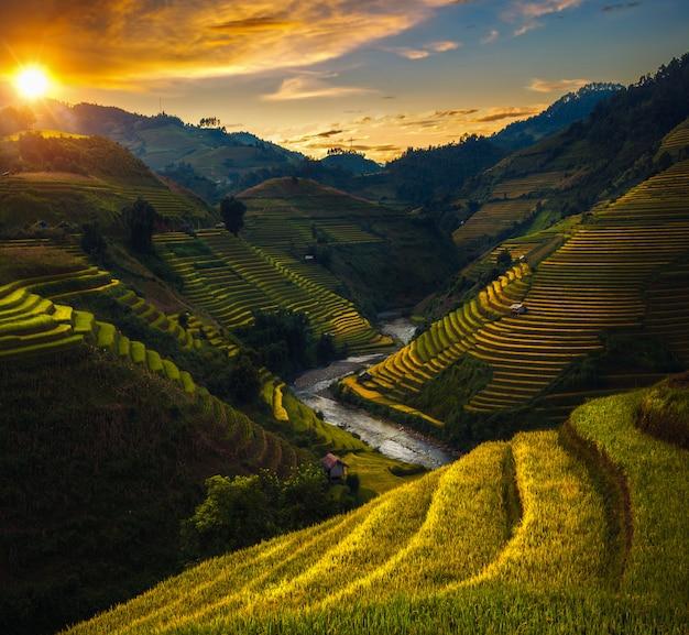 Рисовое поле и рисовая терраса в му канг чай