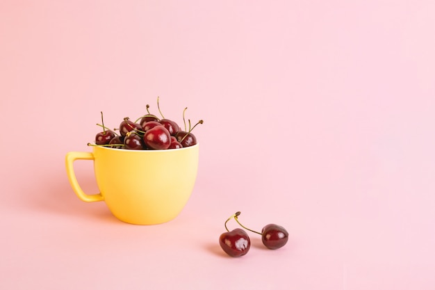 ピンクの背景に黄色のカップの桜。