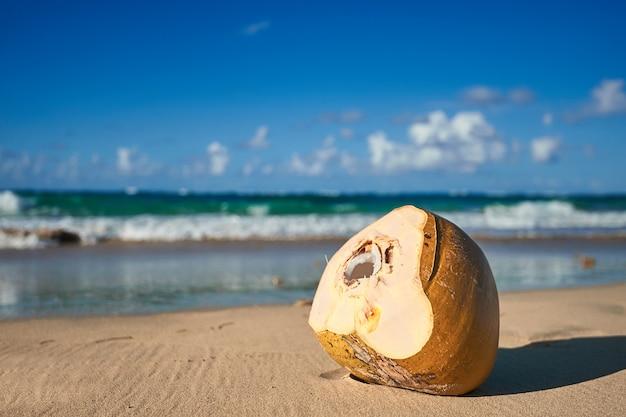 熱帯の牧歌的な楽園の島のパームビーチ-カリブ-ドミニカ共和国プンタカナ