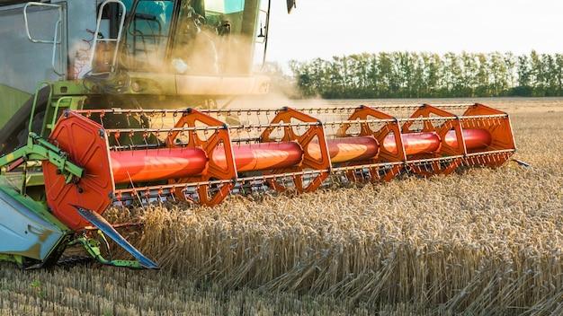 На фоне солнечного летнего дня и голубого неба с облаками. зерноуборочный комбайн собирает спелую золотую пшеницу на поле