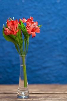 テクスチャとトレンディな青色の背景に赤い花。テキスト用のスペースとクローズアップ。