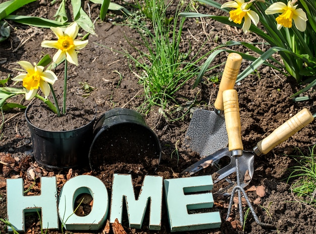 Садоводство, красивые весенние цветы с садовыми принадлежностями