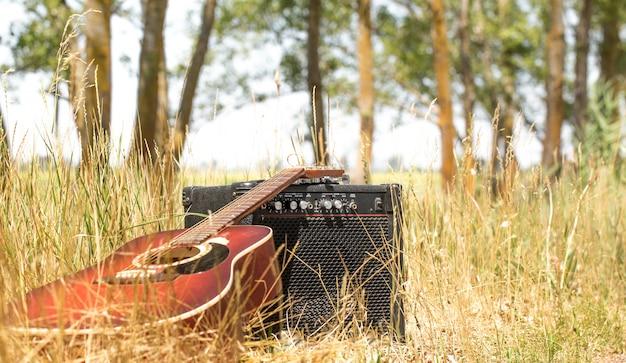 自然の中のギター