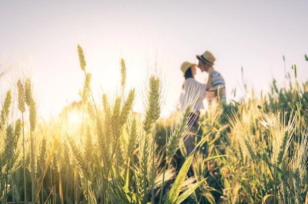 Молодая влюбленная пара целуется на пшеничном поле