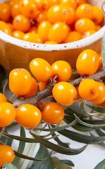 新鮮でヘルシーな海クロウメモドキの果実