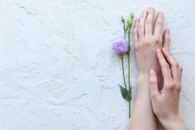 女性の手は紫の花を上から見る