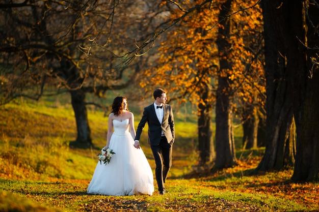 秋の公園の美しい木の背景にエレガントな新郎と美しい幸せなスタイリッシュな花嫁