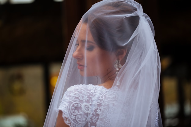 装飾用のウェディングレースのドレスの長いベールの美しい若い花嫁の写真のクローズアップ