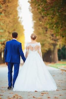 自然の中で森の中を歩いて手を繋いでいる高価なドレスを着た美しい花嫁。結婚式の肖像画。写真、コンセプト。