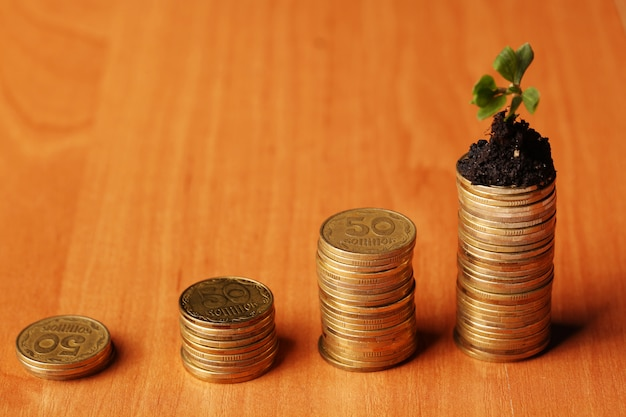 お金から育つ新しい緑の植物の芽