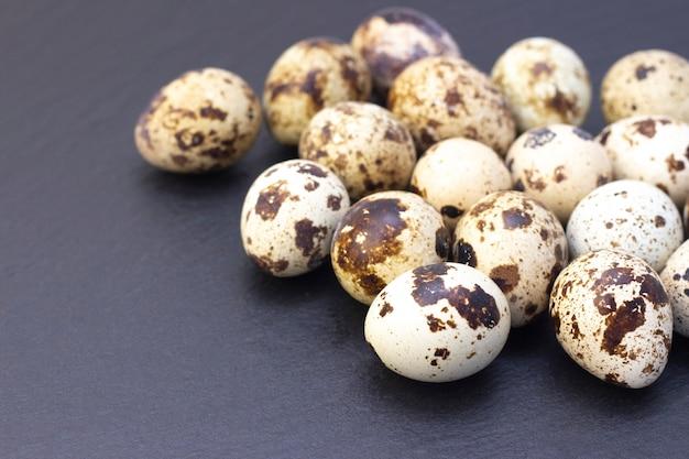 暗いウズラの卵