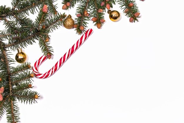 白い背景の上のクリスマスツリーの枝。正月のコピースペース
