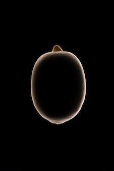 Контур лимона на черном