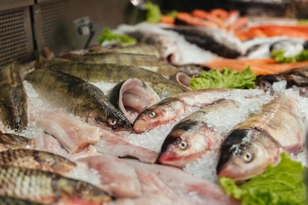 ショーケースで生の魚のクローズアップ