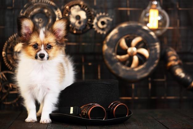 スチームパンクのスタイルで暗い背景に子犬