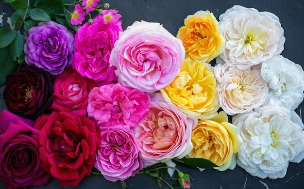 Фон из роз