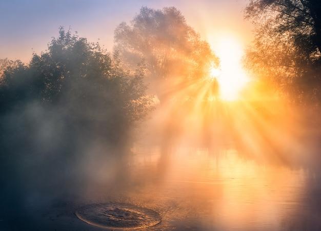 川の日の出