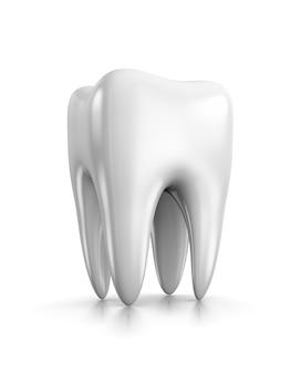 Зуб на белом