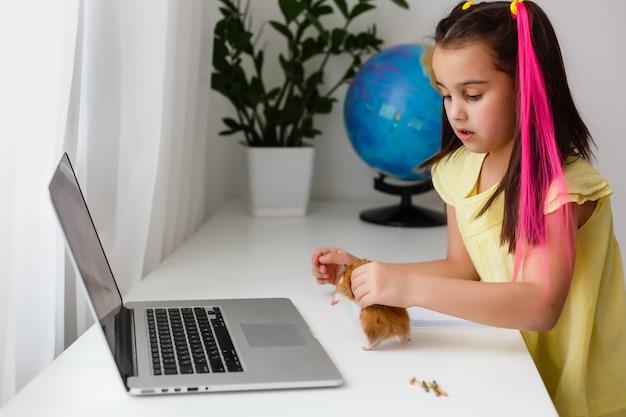 Жизнерадостная молодая маленькая девочка с хомяком любимчика используя портативный компьютер изучая через онлайн систему электронного обучения дома. дистанционное или дистанционное обучение