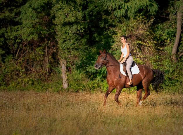 フィールドで馬に乗る若い女性