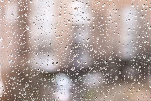 窓からすの背景に雨の滴