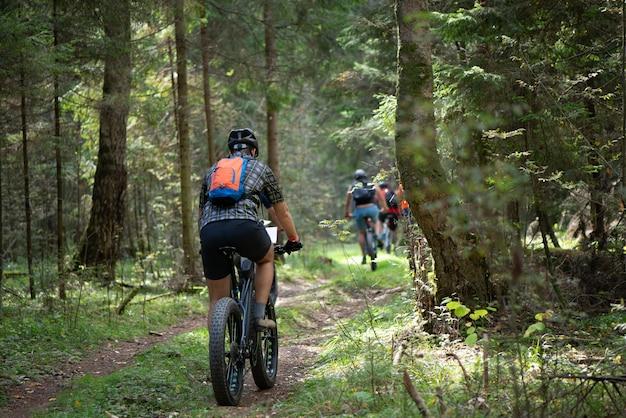 Группа велосипедистов едет по лесной дороге