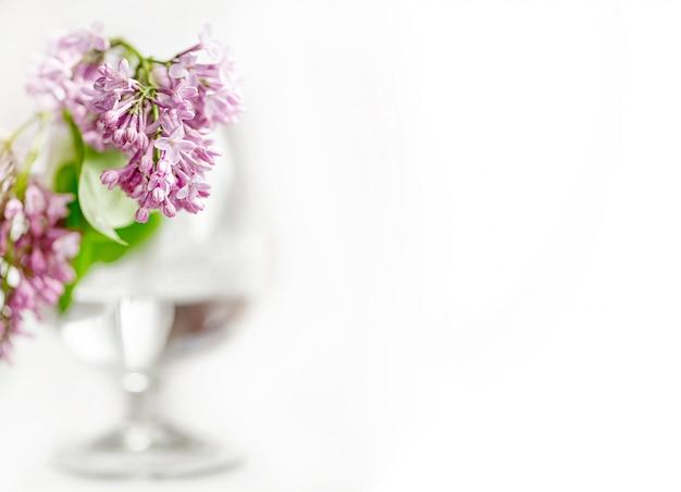 白い背景にぼやけたワイングラスに咲くライラックの束