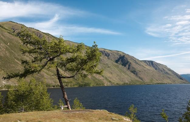 山の湖の眺め