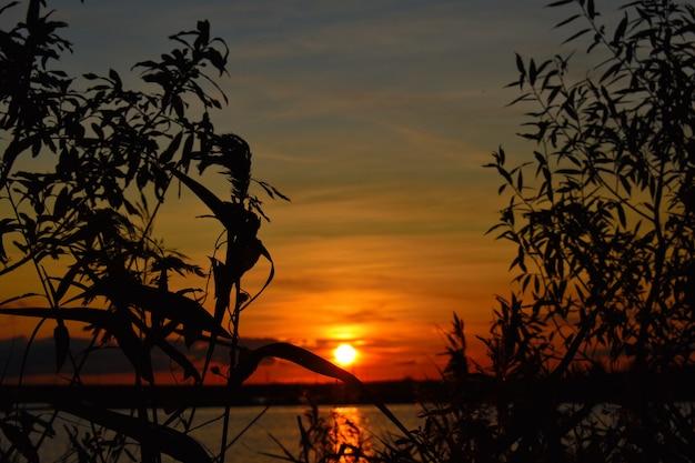 Закат на озере летом